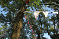 Bunting of Love