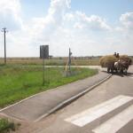 37-231-Ukraine2012IMG_0110-231
